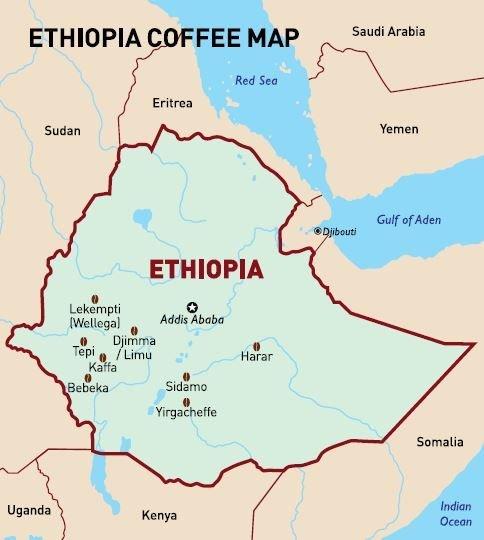 Etiopija-Guji Uraga