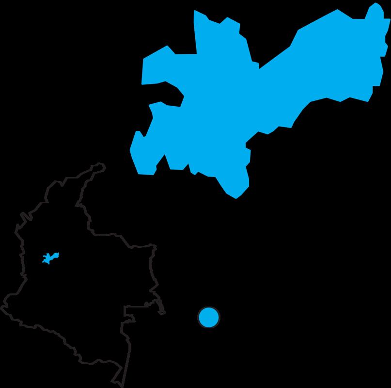 Kolumbija-Palmera Huila